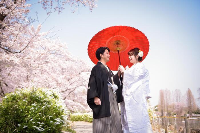 ご予約まだ間に合います!桜ロケーションフォト【上尾丸山公園】編