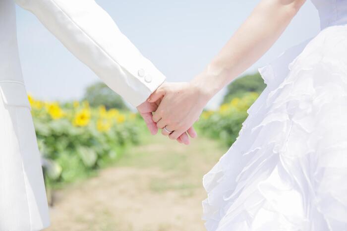 ひまわり畑ロケーションフォト☆上尾店☆