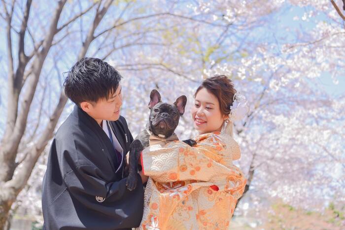桜ブライドルフォト☆彡浦和店