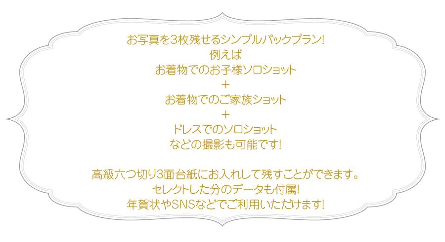 シンパルパック-01.jpg