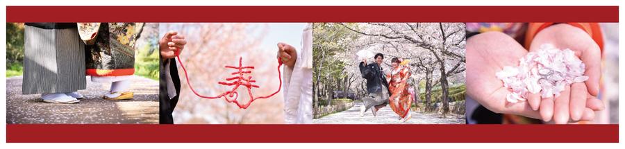201903_SAKURA桜-02.jpg