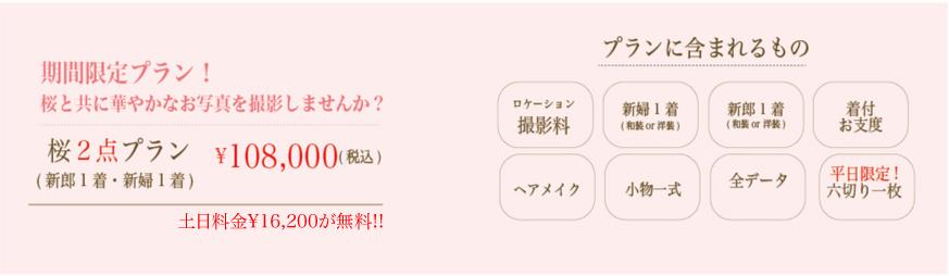 201903_SAKURA桜-01.jpg