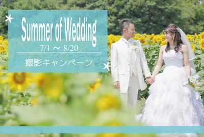 summer-thumb-960x651-7034_700x474.jpg